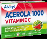Govital Acerola 1000 à Tours