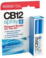 Cb 12 Spray Haleine Fraîche 15ml à Tours