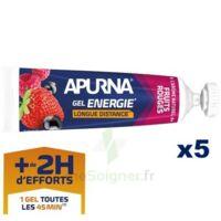 Apurna Gel énergie Longue Distance Fruits Rouges 5*35g à Tours