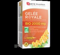 Forte Pharma Gelée Royale Bio 2000 Mg Solution Buvable 20 Ampoules/15ml à Tours