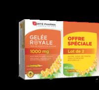 Forte Pharma Gelée Royale 1000 Mg Solution Buvable 2*b/20 Ampoules/10ml à Tours