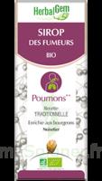 Herbalgem Sirop Bio Des Fumeurs 150ml à Tours