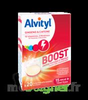 Alvityl Boost Comprimés B/20 à Tours