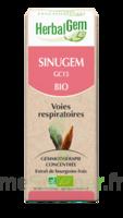 Herbalgem Sinugem Solution Buvable Bio Spray/15ml à Tours