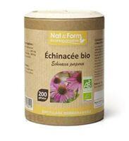 Nat&form Eco Responsable Echinacea Bio Gélules B/200 à Tours