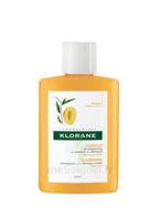 Klorane Capillaire Shampooing Beurre De Mangue 25ml à Tours